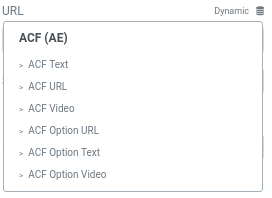 Shows Text, URL, Video and corresponding option page Dynamic Tags